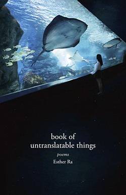 book of untranslatable things